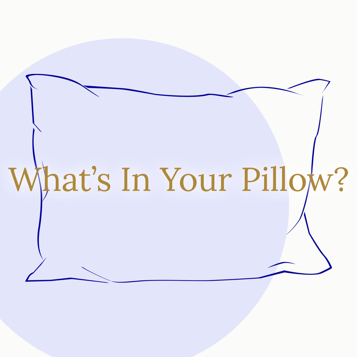 What's In Your Pillow?