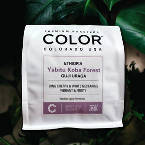 color coffee ethiopia guji uraga premium roast