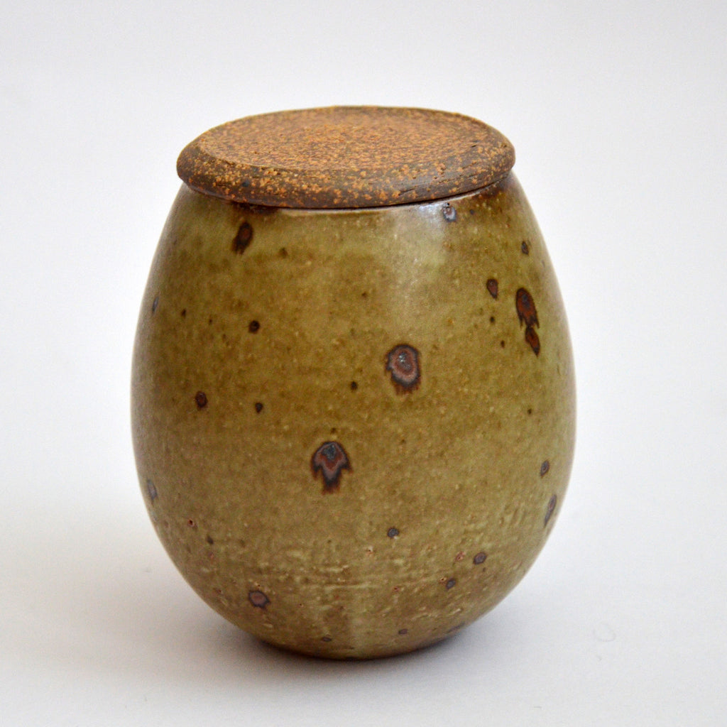 Matte Glazed Kohiki Tea Jar Speckled