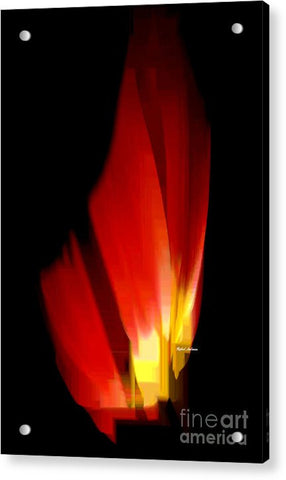Acrylic Print - Abstract Poinsettia