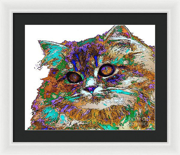 Framed Print - Adele The Cat. Pet Series