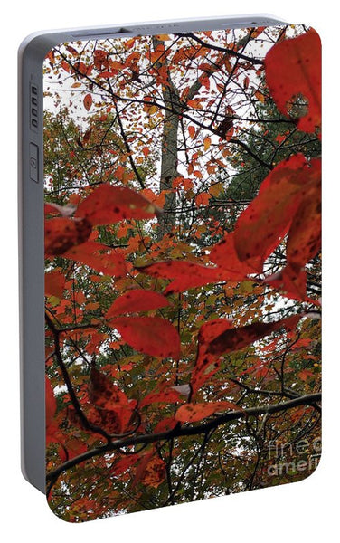 Portable Battery Charger - Autumn Leaves In Red