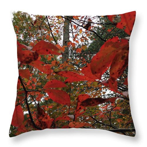Throw Pillow - Autumn Leaves In Red