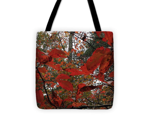 Tote Bag - Autumn Leaves In Red