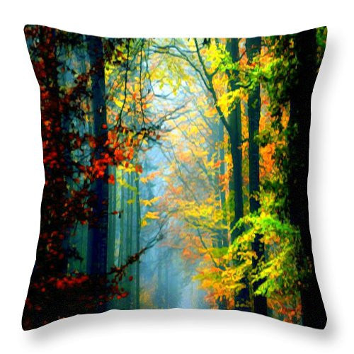 Throw Pillow - Autumn Trails In Georgia