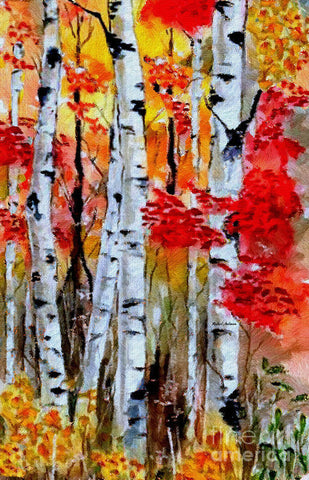 Birch Trees In Fall - Art Print