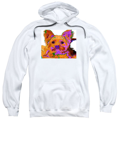 Sweatshirt - Buddy The Baby. Pet Series