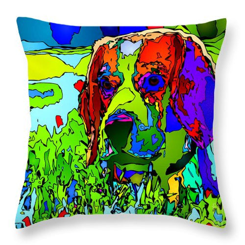 Throw Pillow - Dogs Can See In Color