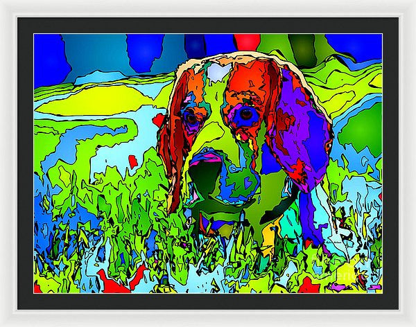 Framed Print - Dogs Can See In Color