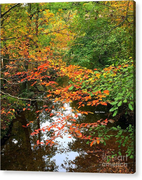 Acrylic Print - Fall Is In The Air