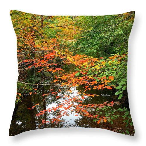 Throw Pillow - Fall Is In The Air
