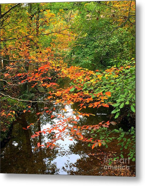 Metal Print - Fall Is In The Air
