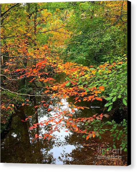 Canvas Print - Fall Is In The Air