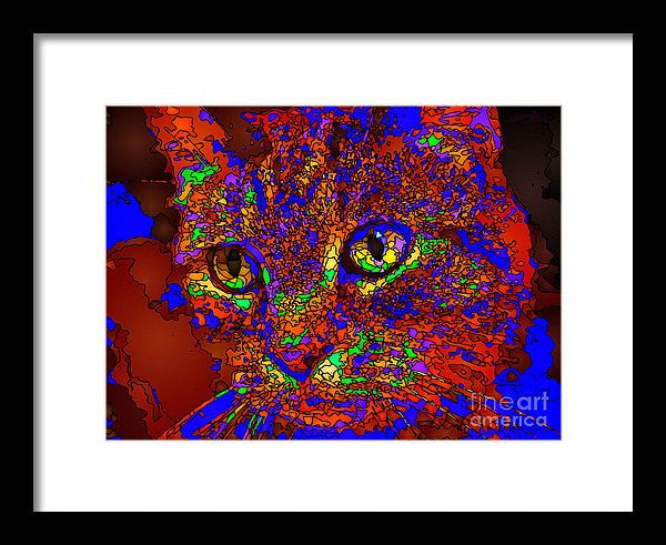 Framed Print - Looking For An Owner. Pet Series