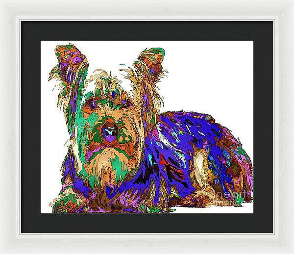 Framed Print - Muffin. Pet Series