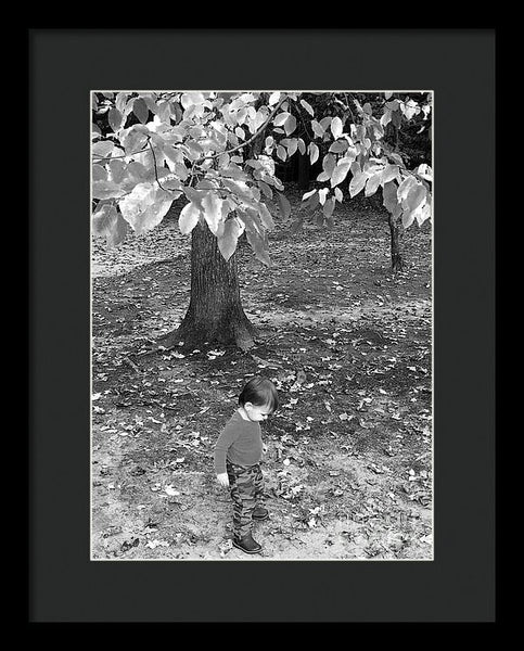Framed Print - My First Walk In The Woods - Black And White