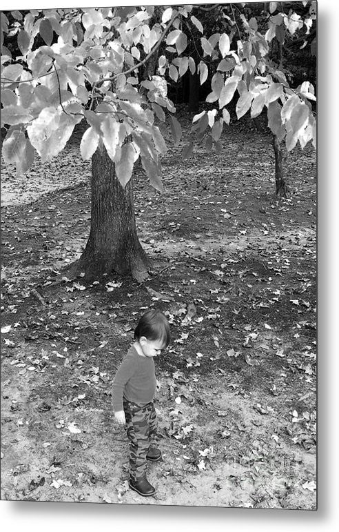 Metal Print - My First Walk In The Woods - Black And White