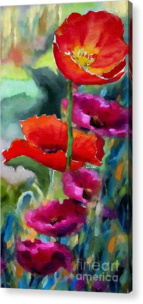 Acrylic Print - Poppies In Watercolor