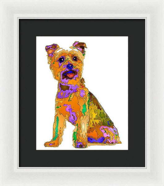 Framed Print - The Best Dog. Pet Series