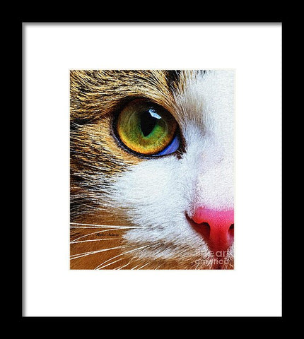 You Know I Love You - Framed Print