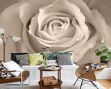 large white rose floral design wallpaper