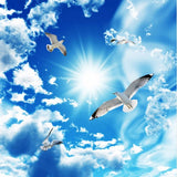 seagulls doves wallpaper