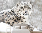 black and white snow leopard wallpaper