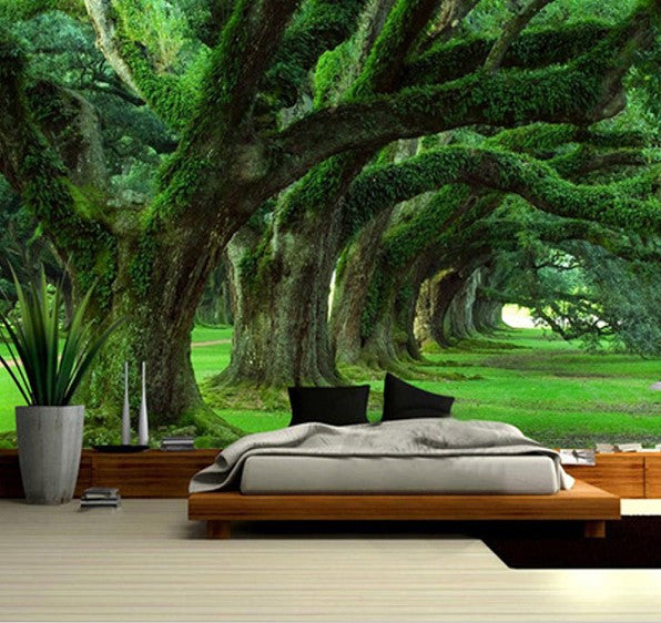 green forest wallpaper  home  business moss trees