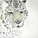 3d white leopard wall paper