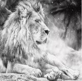 mural black white male lion