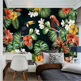 parrot rain forest wallpaper mural