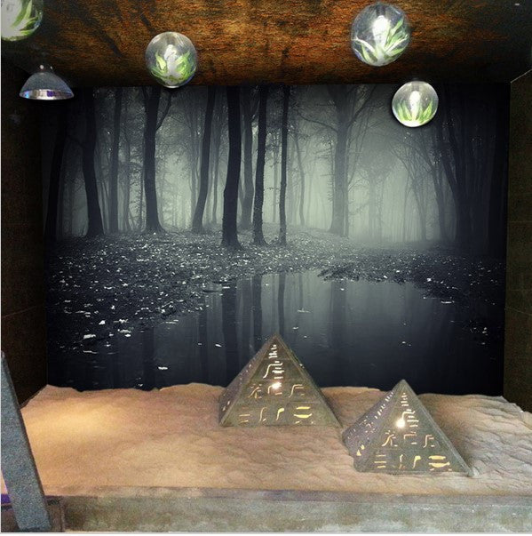 3d Haunted Woods Theme Wallpaper Spooky Forest Custom