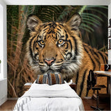 orange tiger 3d wallpaper mural