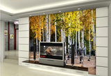white birch trees gold leaves mural