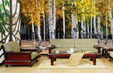 silver birch forest wallpaper