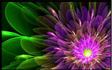 special effects flower design wallpaper