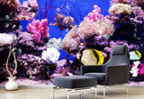 underwater coral wall mural