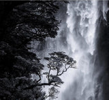 black and white waterfall mural