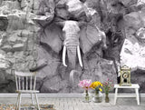 gray elephant rock wall mural