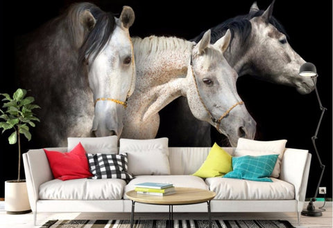 3 Large White Horses 3D Wall Mural Stunning Horse Theme Wallpaper