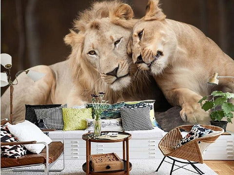 Cuddling Lion Couple 3D Wallpaper High Quality Animal Print Mural