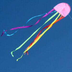 WINDSPEED Jellyfish Single String Kite