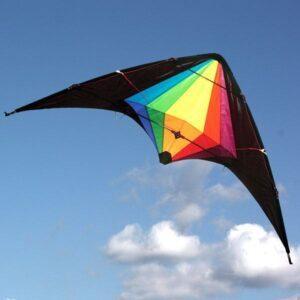 WINDSPEED Black Widow Dual Control Stunt Kite