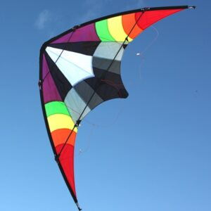 WINDSPEED Ikon Sports Dual Control Stunt Kite