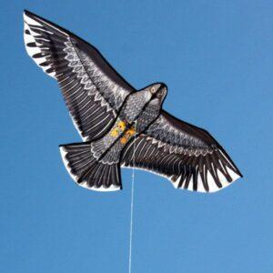 WINDSPEED Eagle Single String Kite