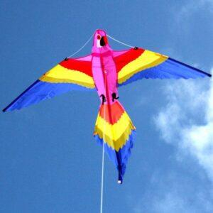 WINDSPEED Lorikeet Single String Kite