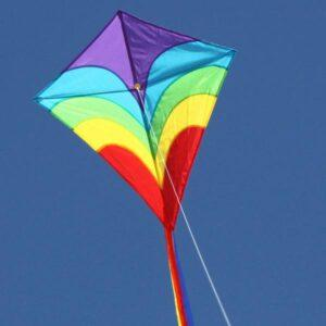 WINDSPEED Waves Diamond Single String Kite