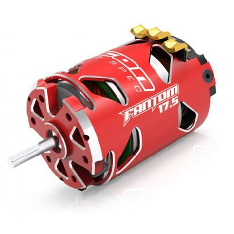 FANTOM13.5 Turn ICON Pro Spec Motor(FAN19313)