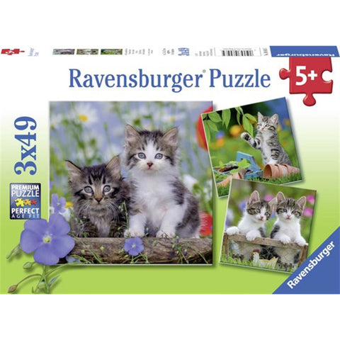 Rburg - Kittens Puzzle 3x49pc