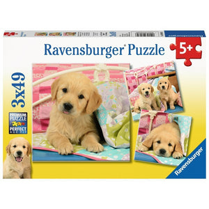 Rburg - Cute Puppy Dogs Puzzle 3x49pc